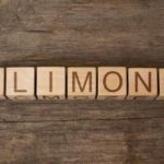 Definition of Alimony